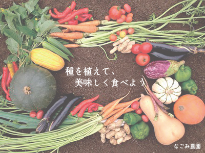 なごみ農園_野菜の画像